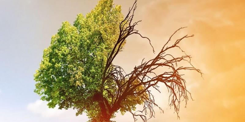 16 de Março – Dia de Conscientização das Mudanças Climáticas