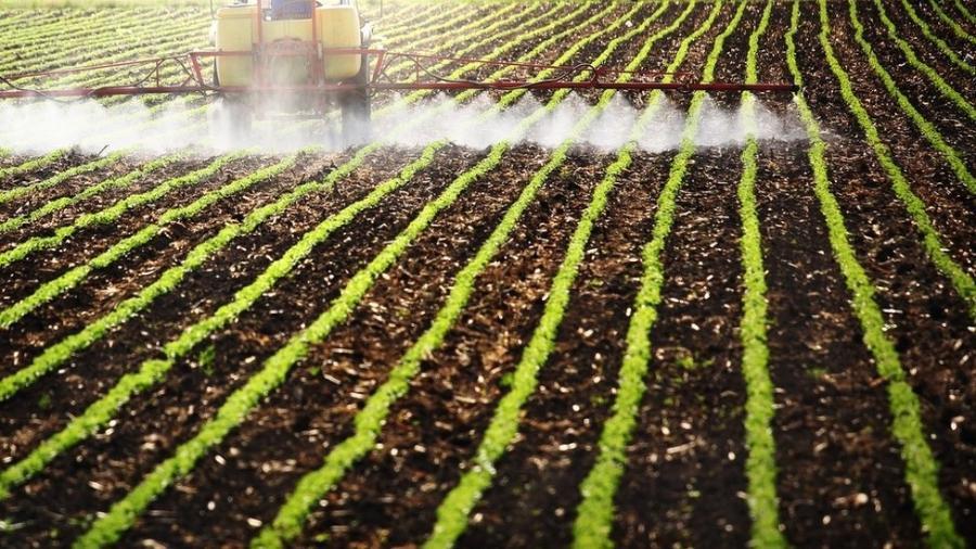 Ministério da Agricultura dá licença a agrotóxicos não analisados em 60 dias