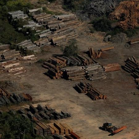 Brasil exportou milhares de carregamentos não autorizados de madeira de porto na Amazônia.